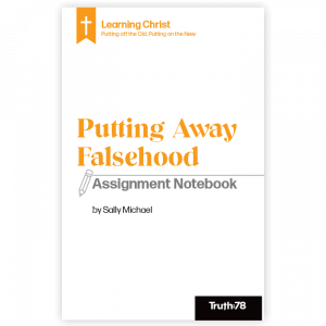 Putting Away Falsehood: Assignment Notebook