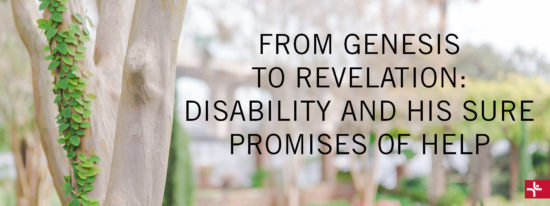 From Genesis to Revelation: Disability and His Sure Promises of Help