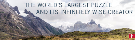 The World's Largest Puzzle and Its Infinitely Wise Creator
